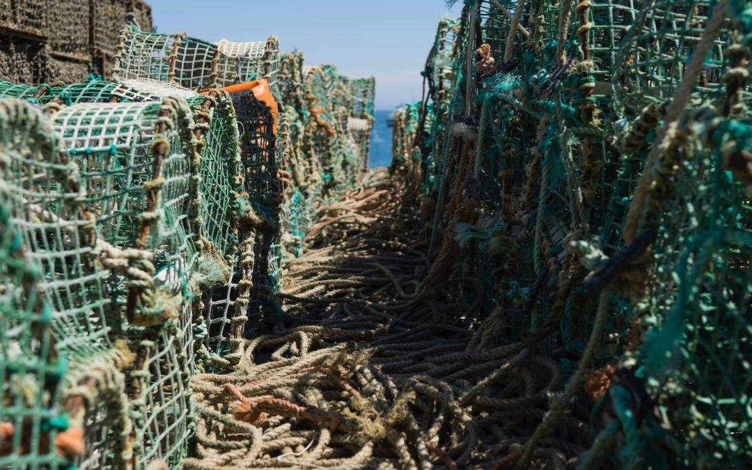 Depleting Our Oceans